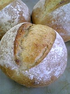 パンの実習〜♪